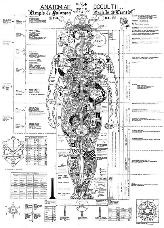 The Occult Anatomy of the human body on the Vitruvian Man