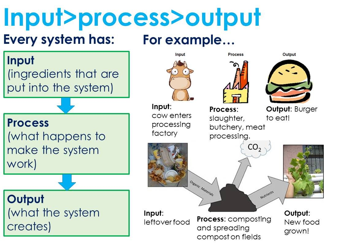 diagram with inputs and outputs of photosynthesis process pioneer mosfet 45wx4 wiring input output 7th grade science pinterest