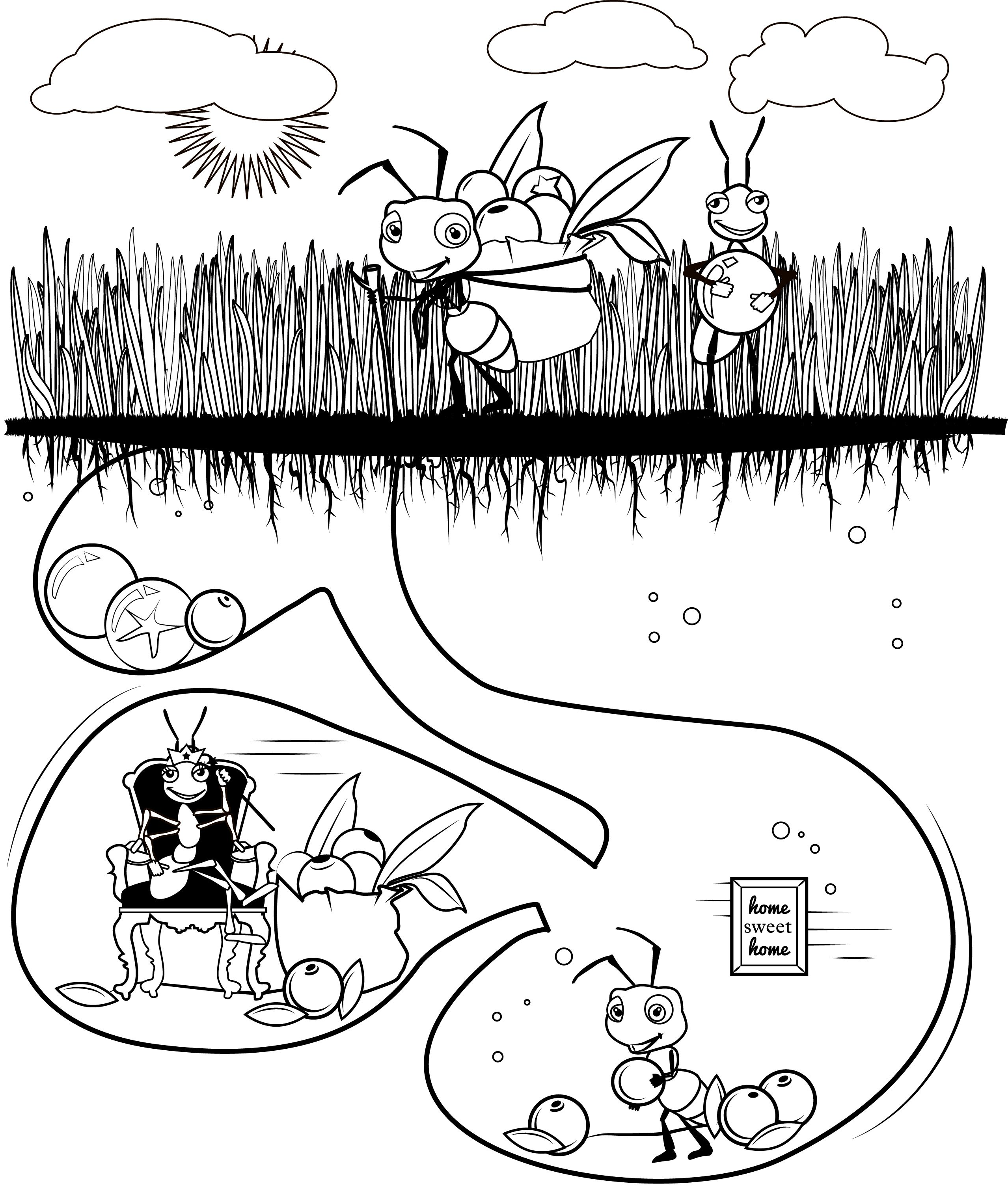Ant Coloring Sheet