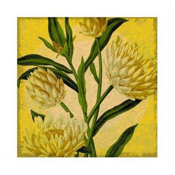 Antique yellow floral archival print aud liked on polyvore featuring also butter silver blue rustic wall decor time corfu mediterranean rh pinterest