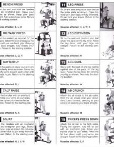 Weider home gym exercise chart  health also multi yourviewsite rh