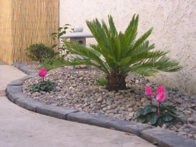 Easy Rock Garden Designs Designed The Planter Area And Placed