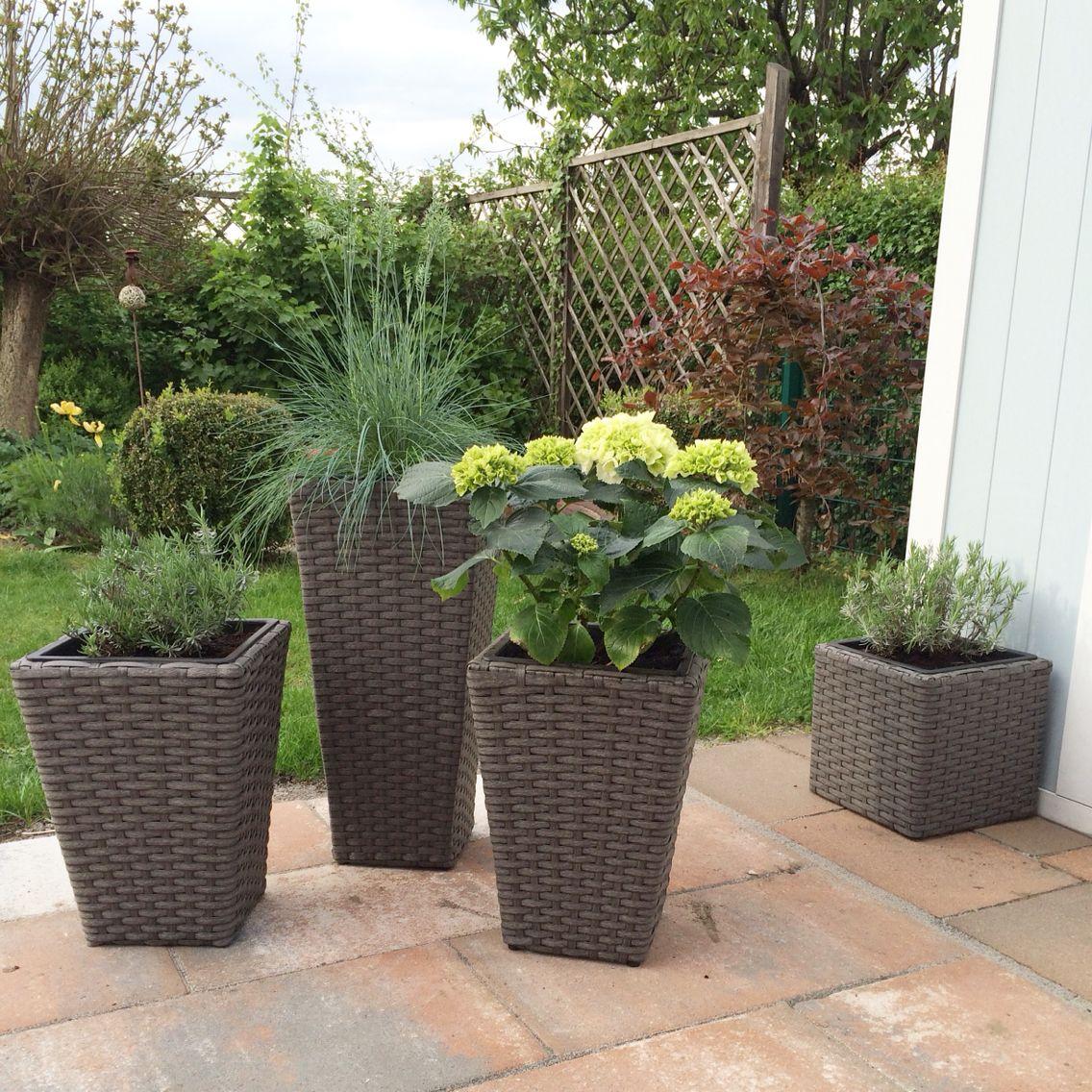 Topfpflanzen Terrasse Rattan Kubel Mit Bepflanzung Deko Pinterest