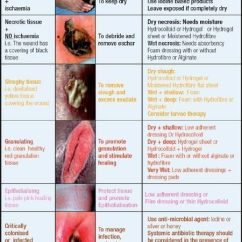 Wound Assessment Diagram Electric Fuel Pump Relay Wiring Related Image | Fundamentals-nursing Pinterest Care, Nursing Notes And Students
