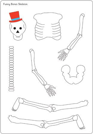 Have students cut out and glue together the skeleton on