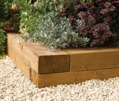 Timber Garden Edging Google Search Garden Edging Pinterest