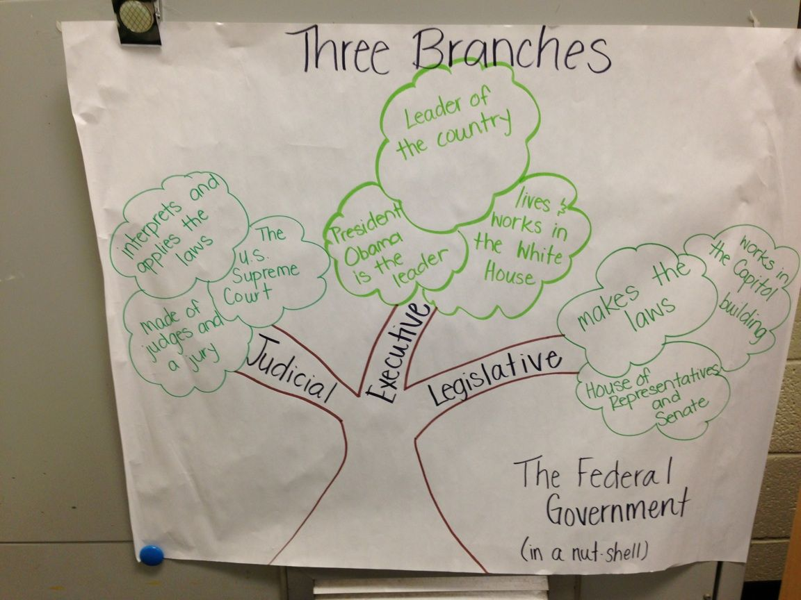 Three Branches Of Government Anchor Chart Judicial