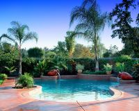 Tropical Landscaping Ideas around Pool | Tropical Pool ...