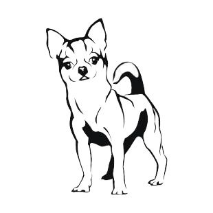 Top Chihuahua Cartoon Drawings Images for Pinterest