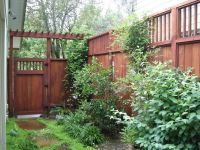 Sideyard Fence and Gate | Green Spaces with Fresh Air ...