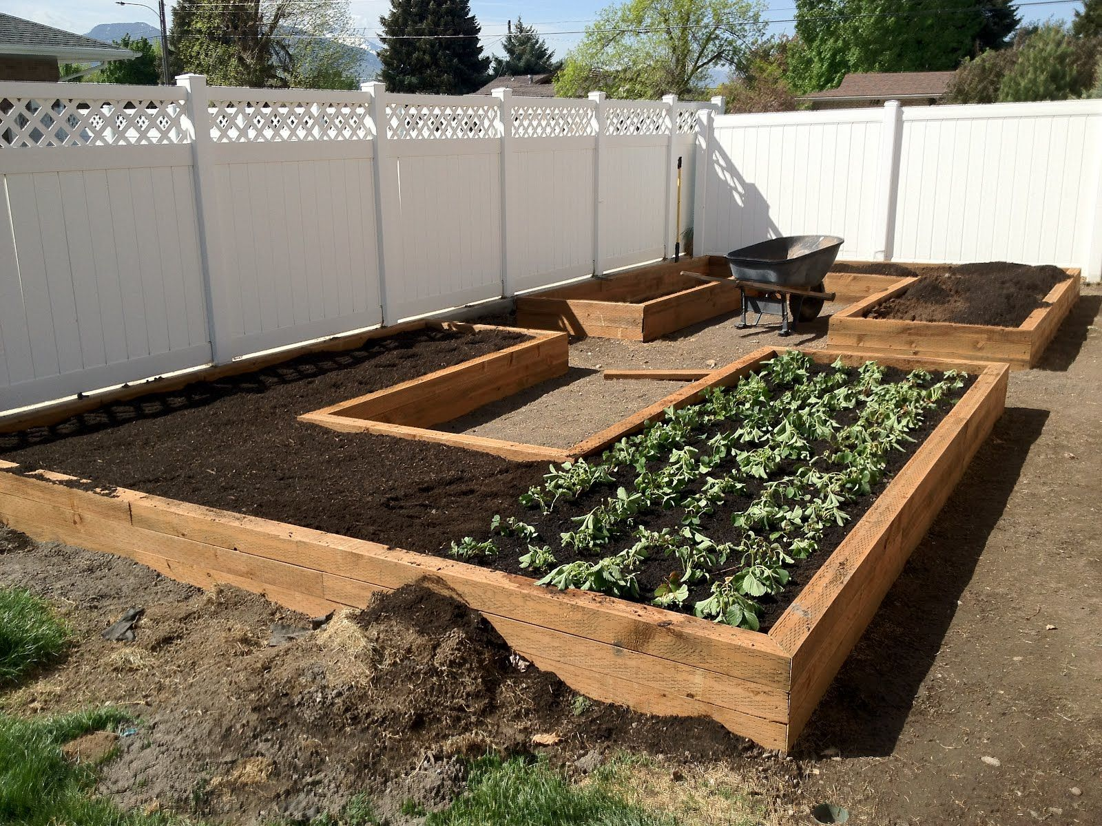 17 Best Ideas About Garden Box Raised On Pinterest Vegetable