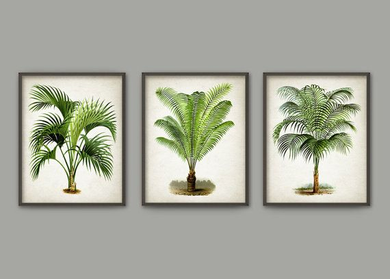 Palm tree botanical wall art print set of by quantumprints also rh pinterest