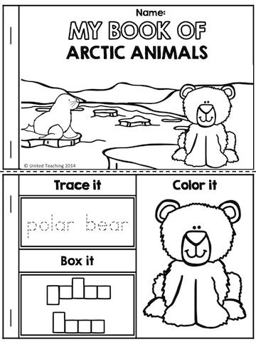 Artic Socalstudys First Grade Animals Worksheets. Artic