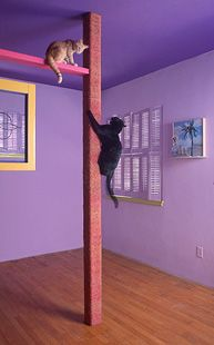 Floor to ceiling scratching post/climbing pole (cover the ...
