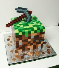 Minecraft Party Ideas | Minecraft cake, Cake and Facebook