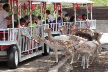 World Cave And Wildlife Park Affordable Family