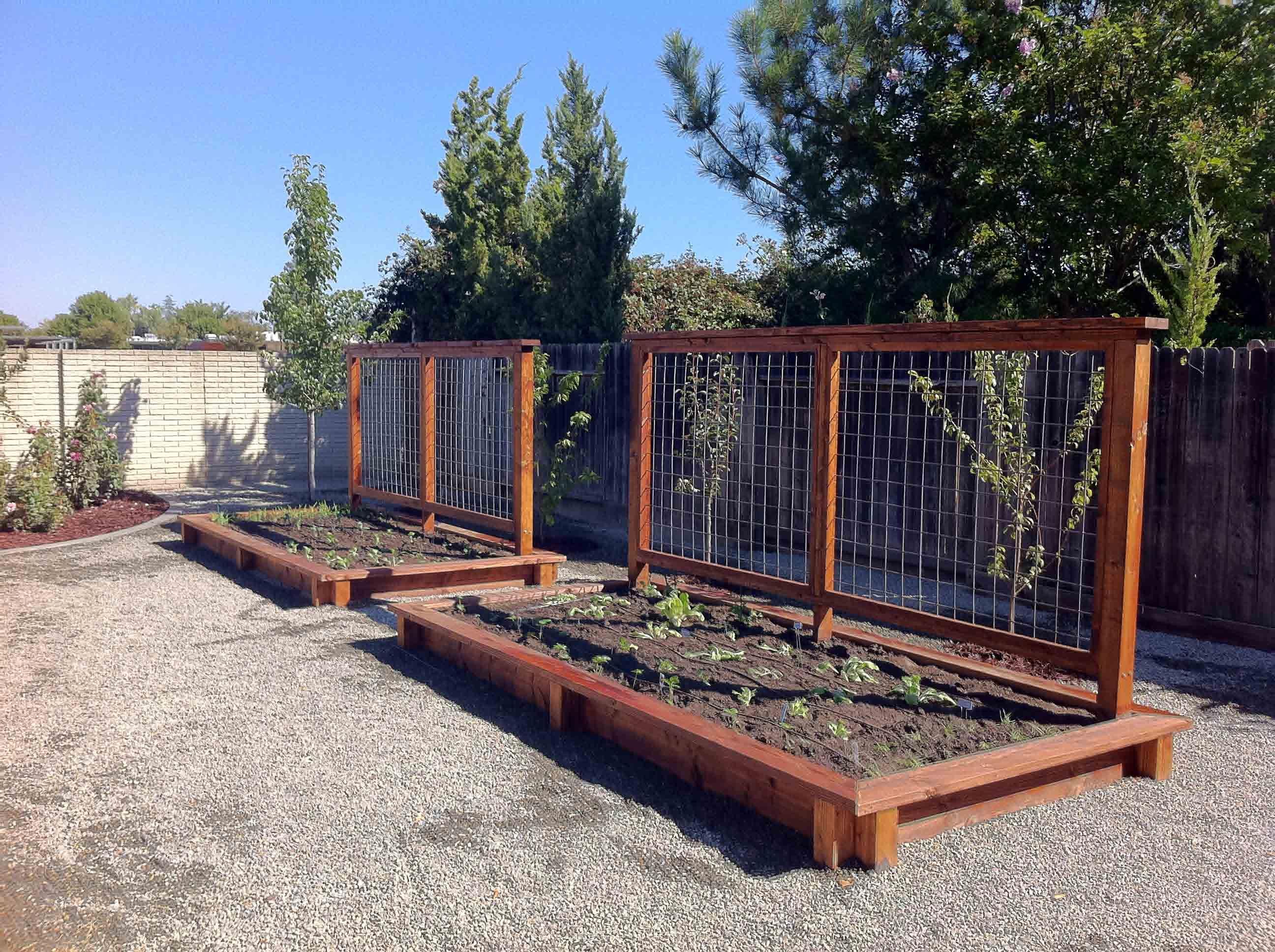 Raised Vegetable Garden Bed Designs Sacramento Raised Vegetable
