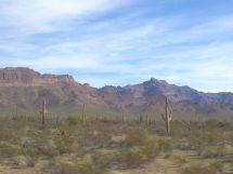 Sonora Desert Mexico