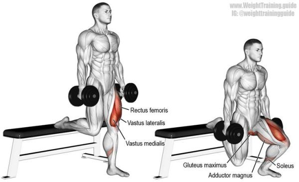 Dumbbell Bulgarian split squat Targets your Quadriceps