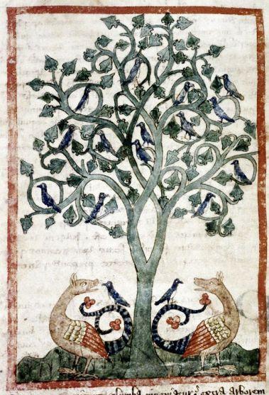 Image result for medieval manuscript tree