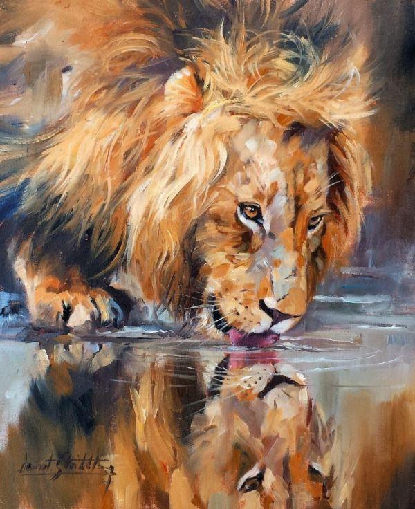 Lion Superb David Stribbling Oil Painting
