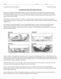 science worksheets ecosystem