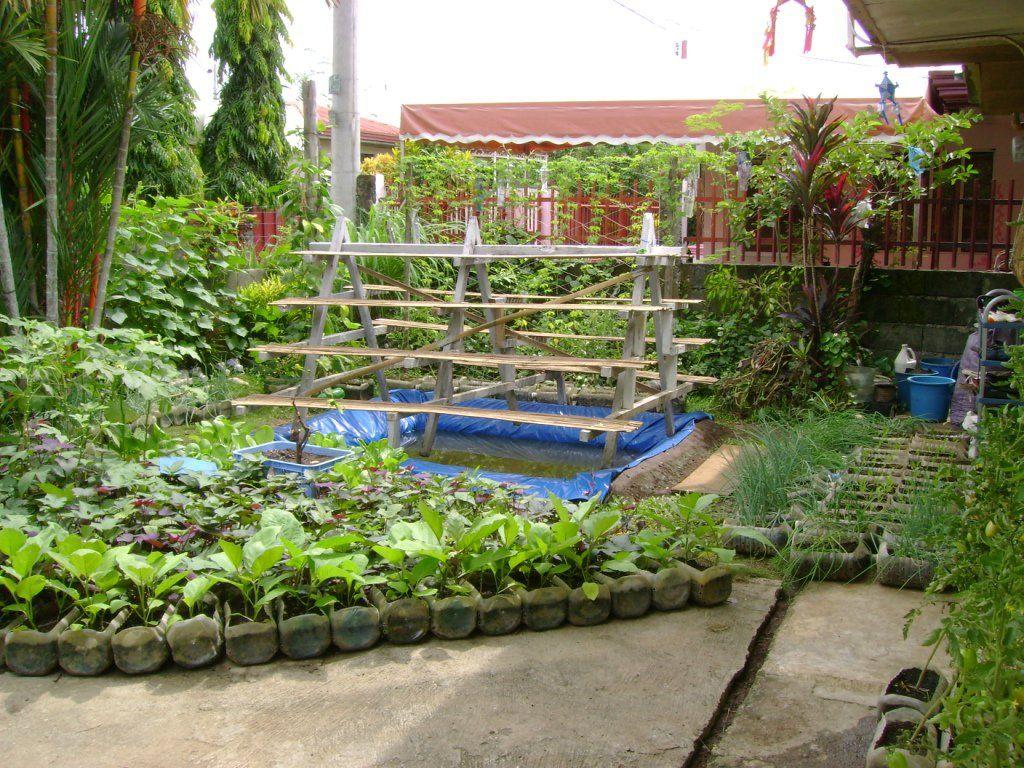 urban vegetable garden ideas - Patio Vegetable Garden Ideas