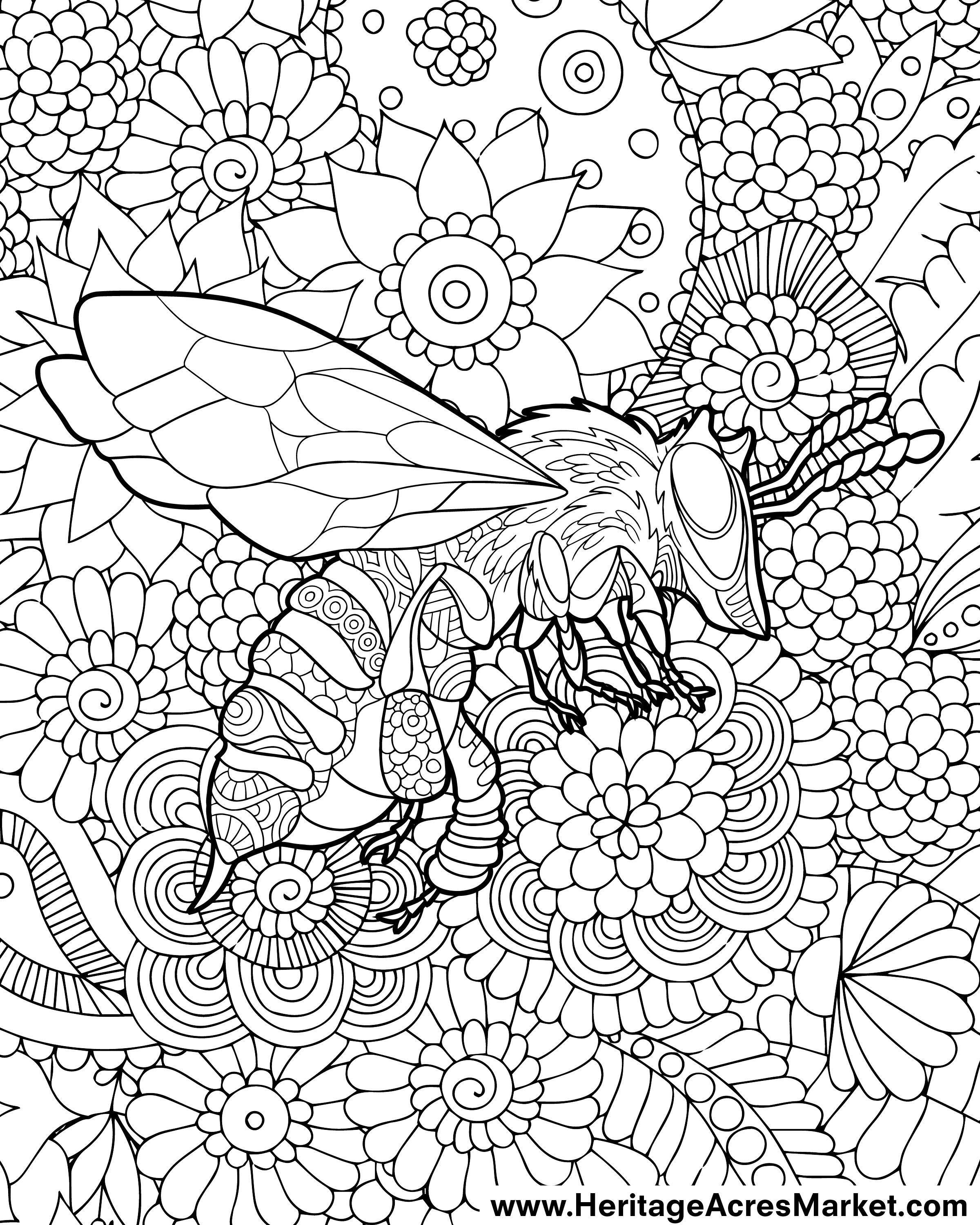 Week 2 Free Coloring Page Friendly Bee