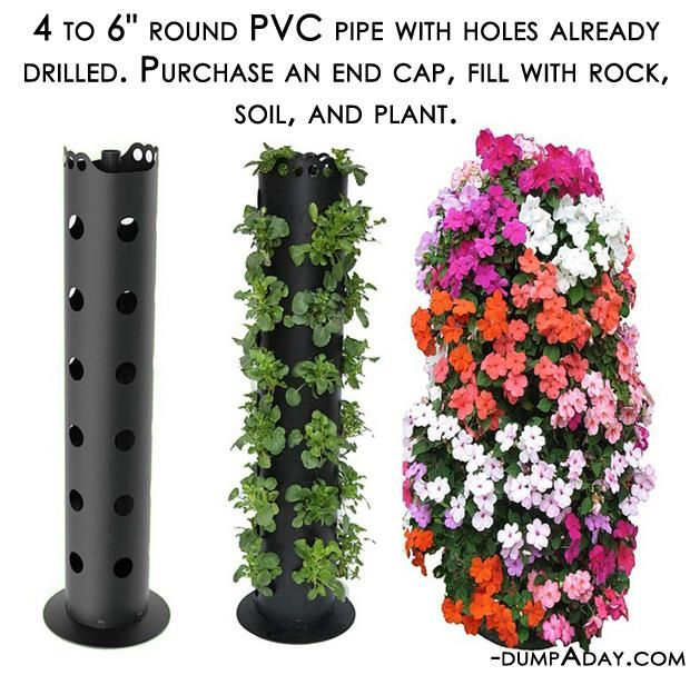 A Cheap Easy Beautiful Way To Create Vertical Vegetation In My