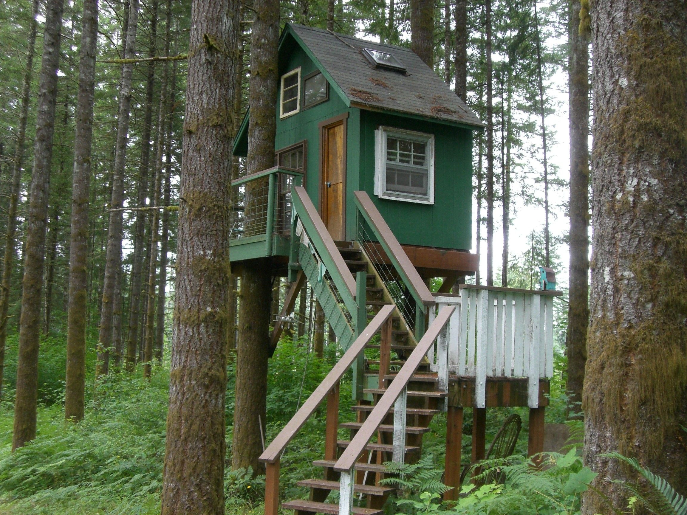 Fun Tree House Plans For Kids With Green Wooden Exterior Wall