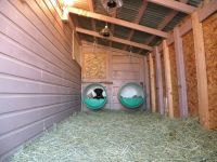 Bed, hay, heat lamps and heated water | OMG dog houses ...