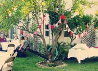Garden Engagement Party Ideas | Decorating Ideas  Summer ...