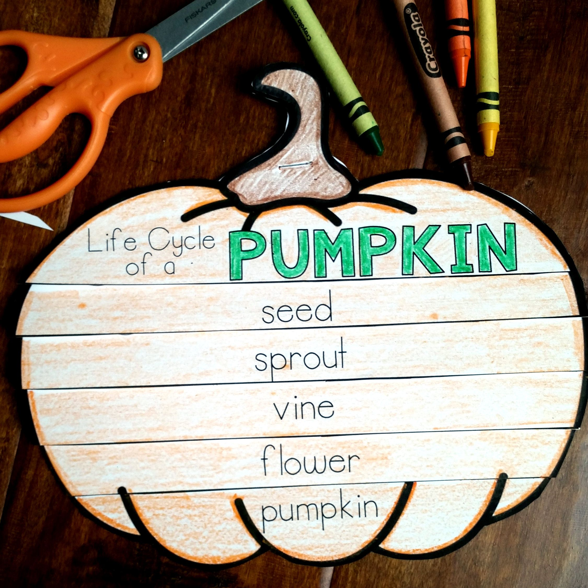 Pumpkins Pumpkin Life Cycle Flip Book