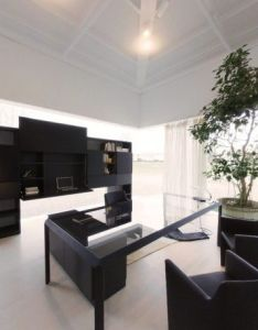 Potted plant indoor curtain glass wall carpet ceiling light and office room charming interior embracing the minimalist home design also house displaying furniture in natural settings compact rh pinterest