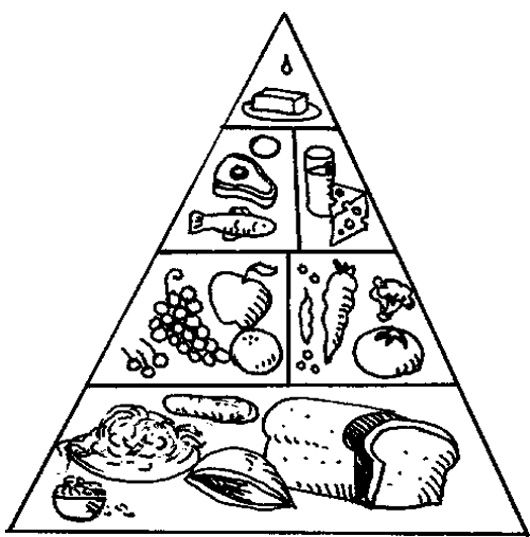 The Food Pyramid With A Nice Array Of Coloring Page