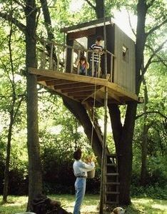 Ryland   roost ken pursley treehouse inspiration pinterest house plans and projects also rh uk