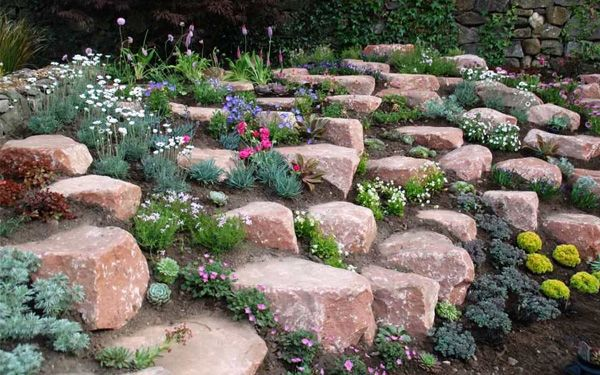 How To Build And Plant An Alpine Rock Garden Gardens Editor And An