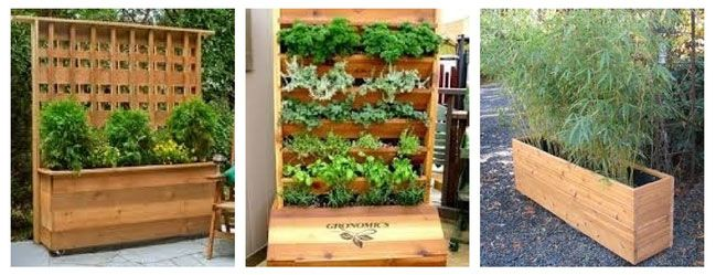 Container Vegetable Garden Ideas homey ideas potted vegetable garden plain 1000 images about vegetable container gardening on pinterest Container Vegetable Gardening Ideas Tips Design Ideas And Decor