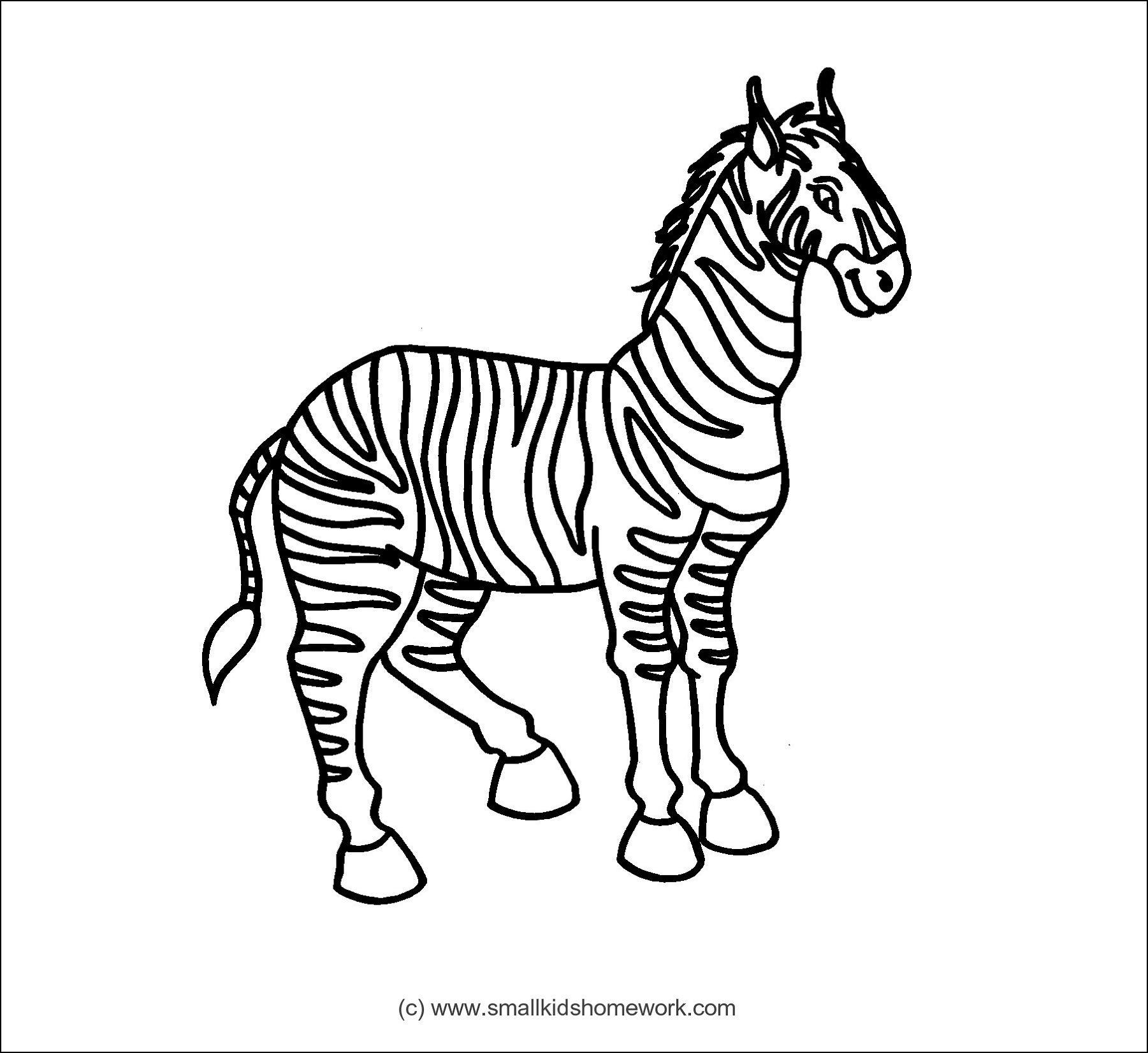 Zebra Outline Picture