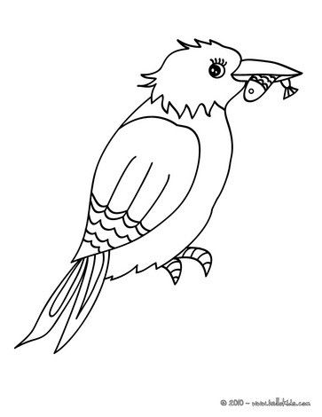 Common Kingfisher coloring page. Nice bird coloring sheet