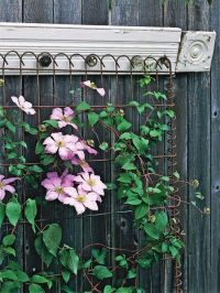 Trellis Design Ideas: Wall-Mount Trellises | That's weird ...