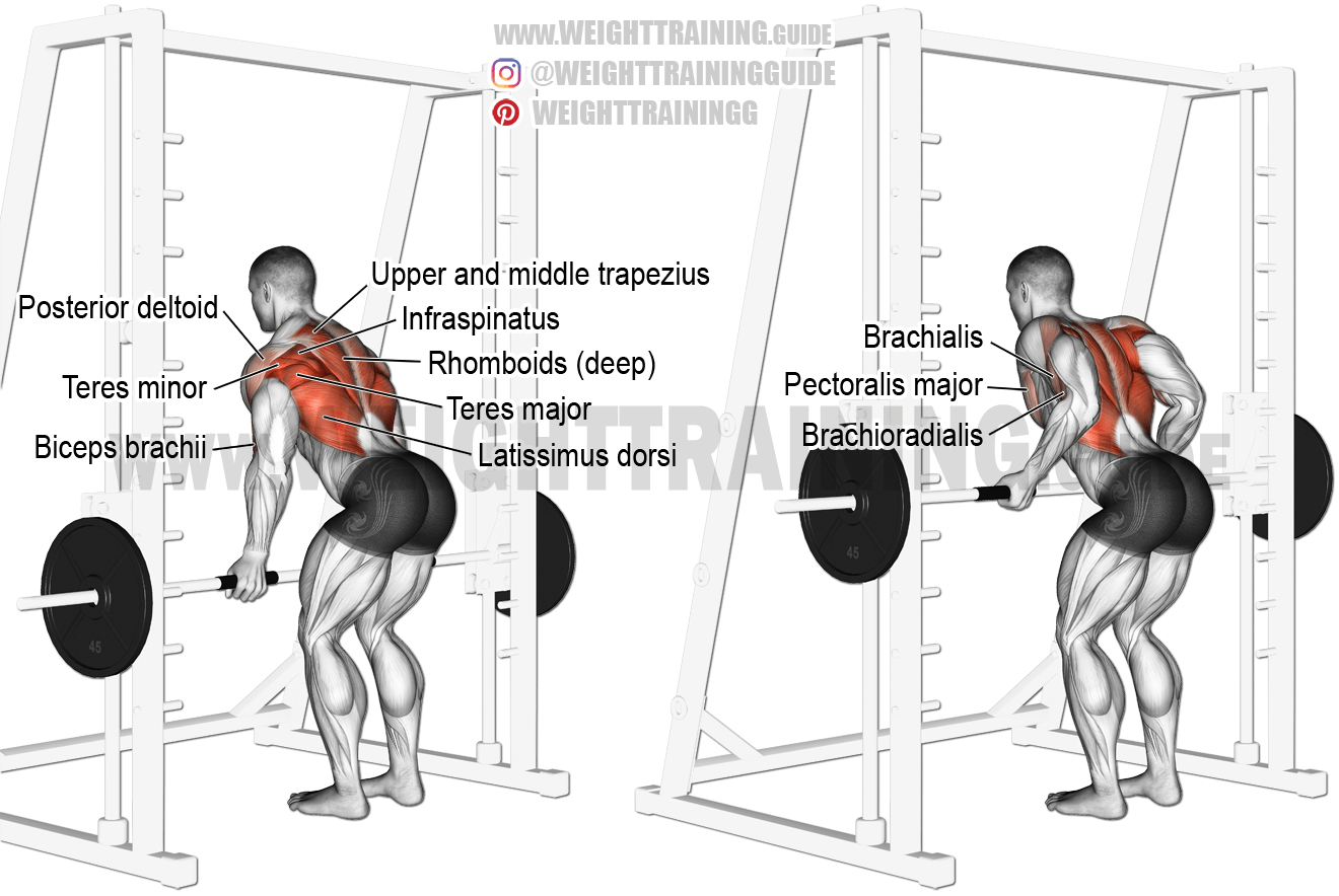 Smith Machine Underhand Yates Row A Compound Exercise