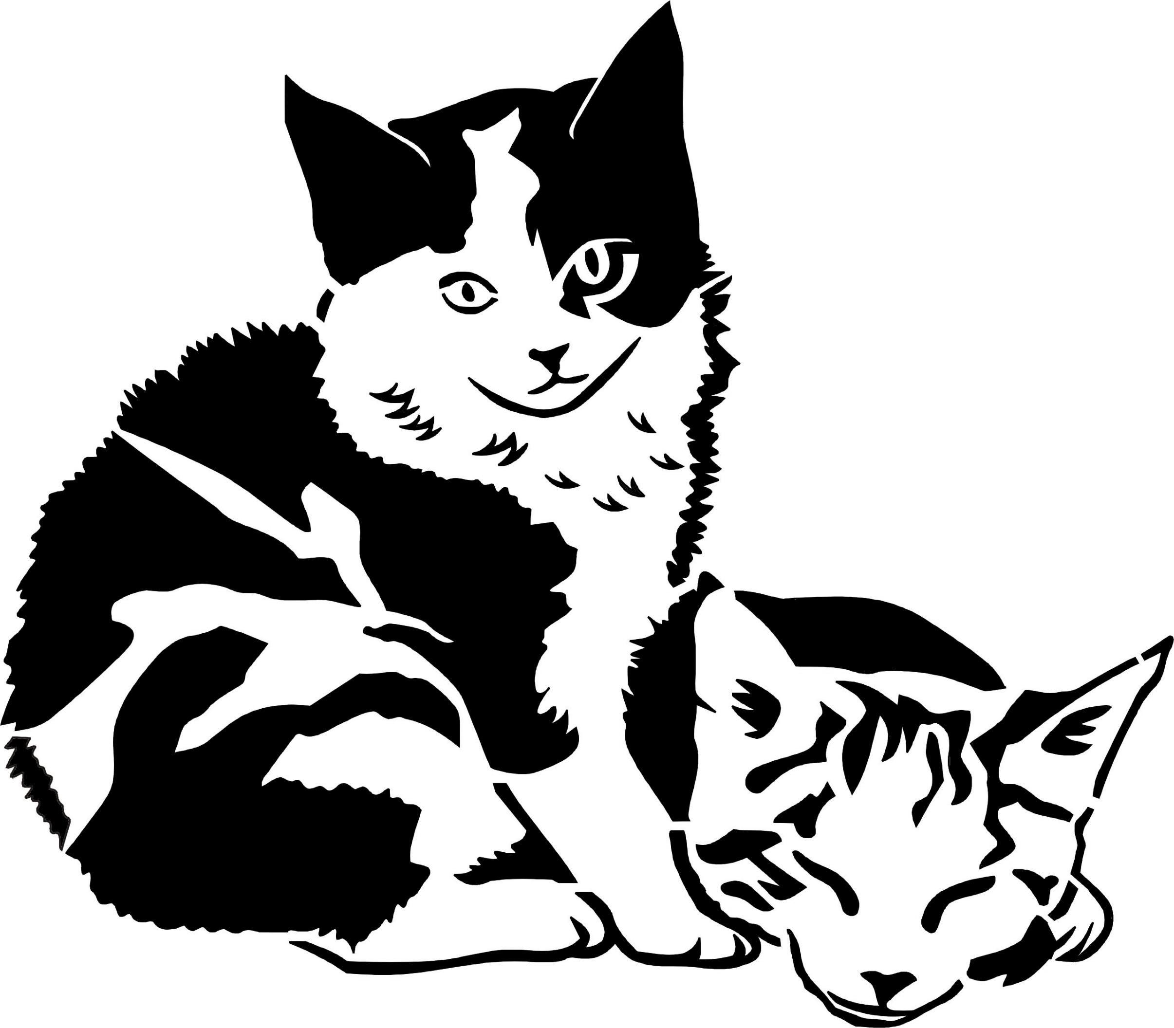 Das Beste Von Malvorlage Katze Umriss Top Kostenlos