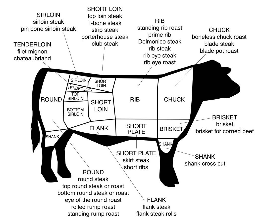 beef cuts diagram of cow 6 prong trailer plug wiring for cooking baking tips pinterest