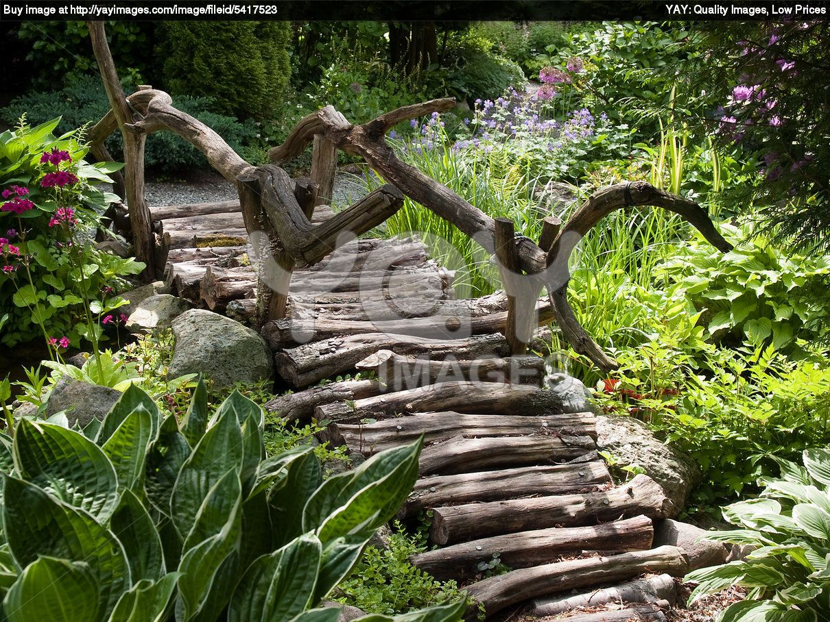 Tropical Walkway 1000 Images About Landscape Ideas On Pinterest