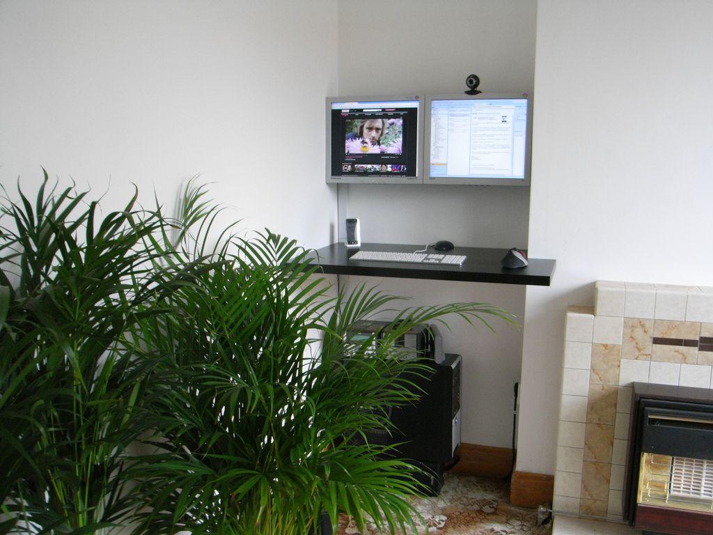 Indoor Plant Decorating Ideas Indoor Plants House Plants