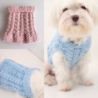 DOG DIY: Knitting cute little dog sweaters for charity ...