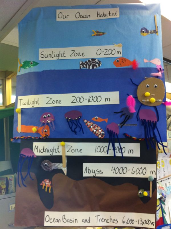 Ocean Zones Science Bulletin Board Idea