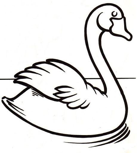 Dibujos y Plantillas para imprimir: Dibujos de Cisnes para