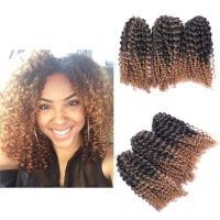 "8"" Ombre Afro Kinky Curly Crochet Braids Marlybob Braid"